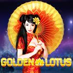 Golden Lotus RT